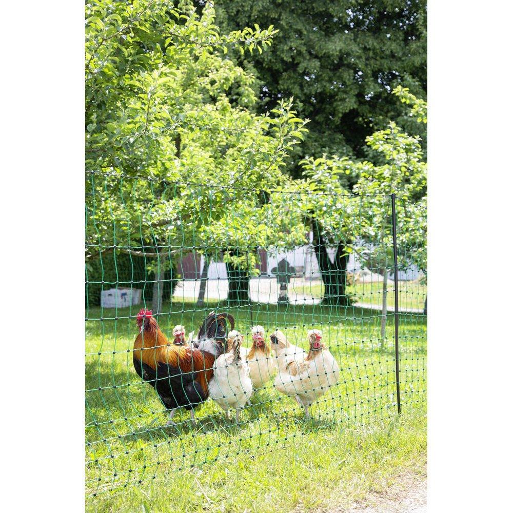 Geflügelnetz PoultryNet grün elektrifizierbar Bild 16