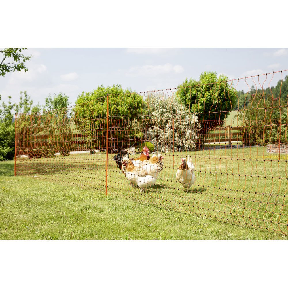 Geflügelnetz PoultryNet orange elektrifizierbar Bild 20
