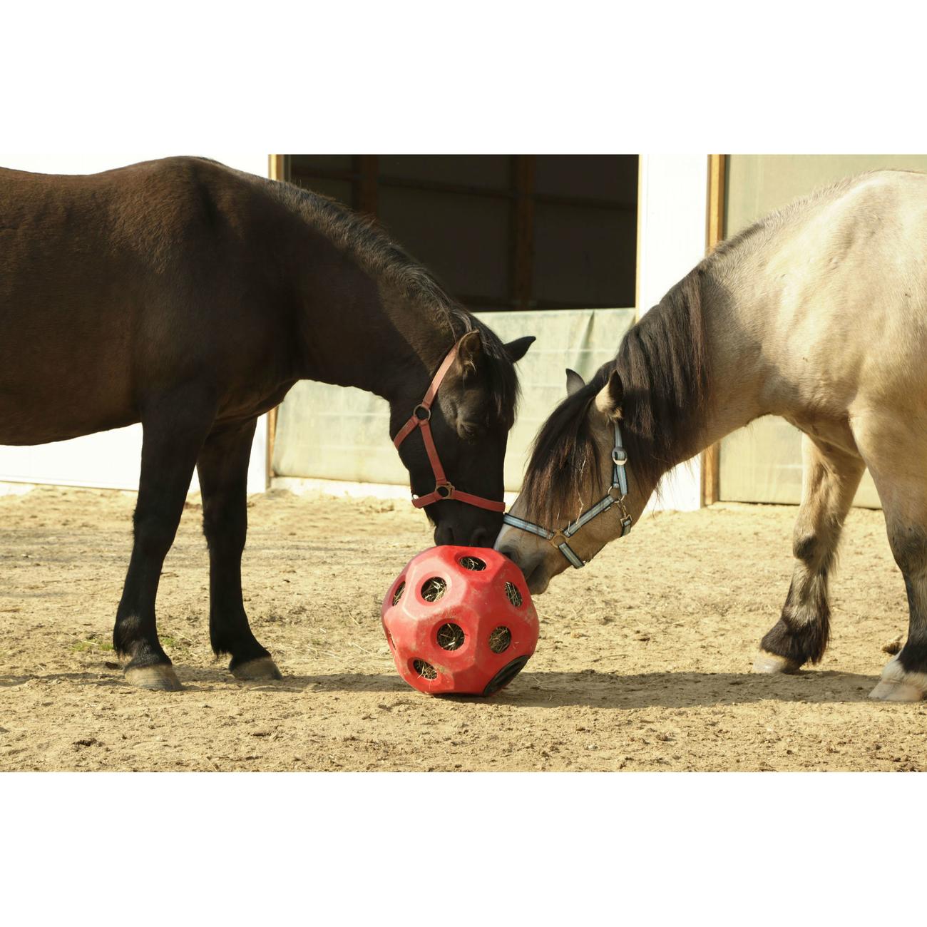 Kerbl HeuBoy Futterspielball für Pferde Bild 8