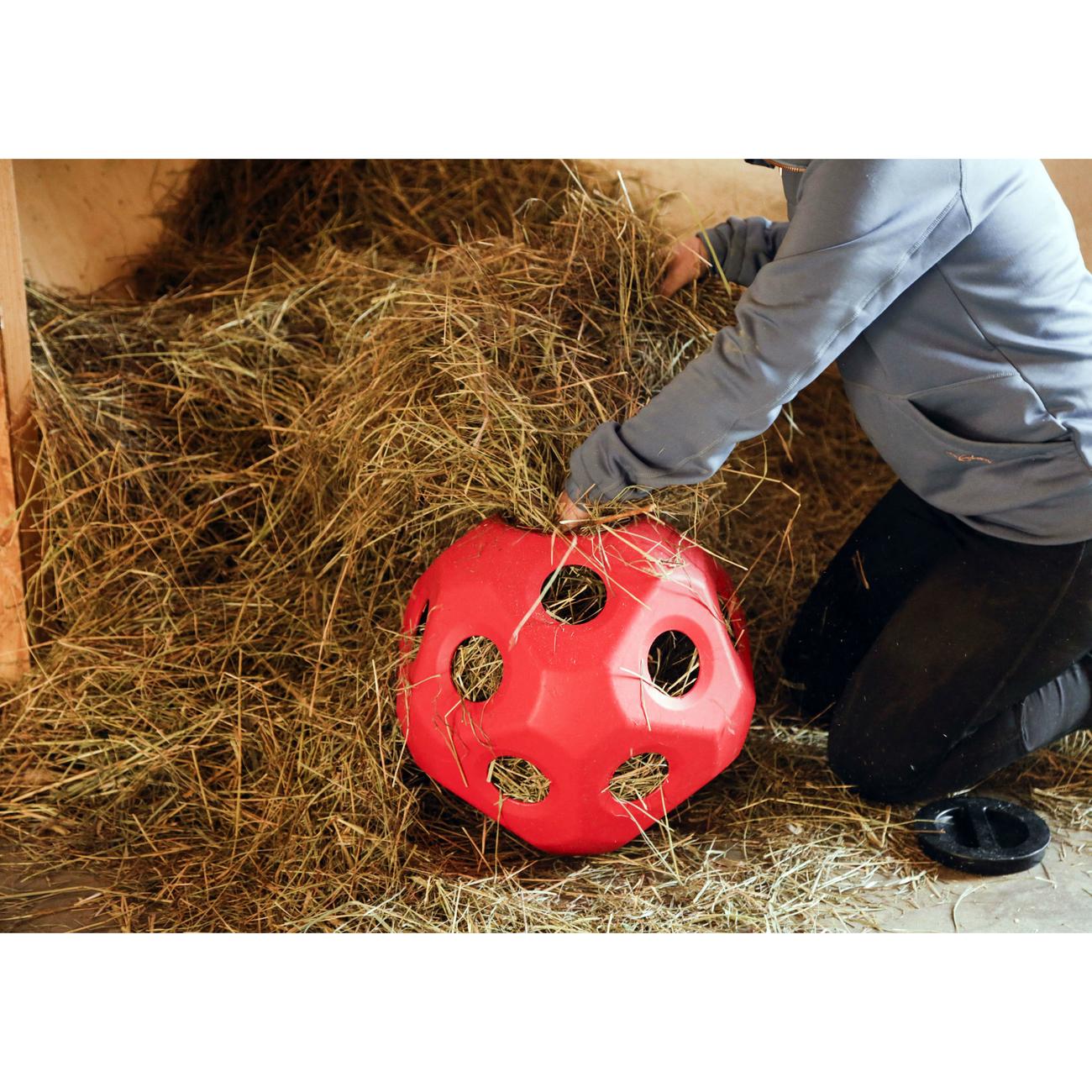 Kerbl HeuBoy Futterspielball für Pferde Bild 7