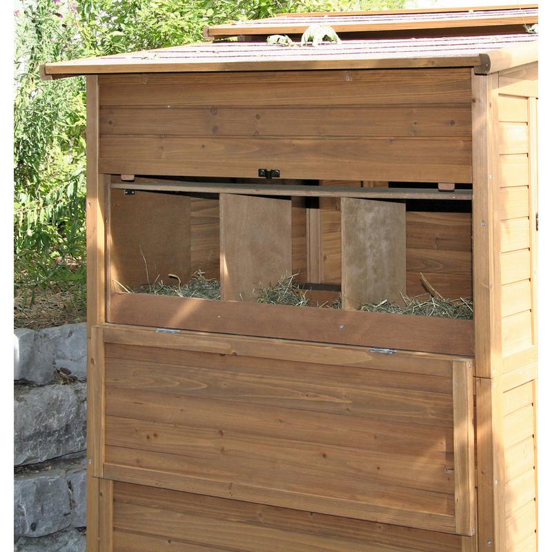 Hühnerhaus Hühnerstall XXL aus Holz Bild 4