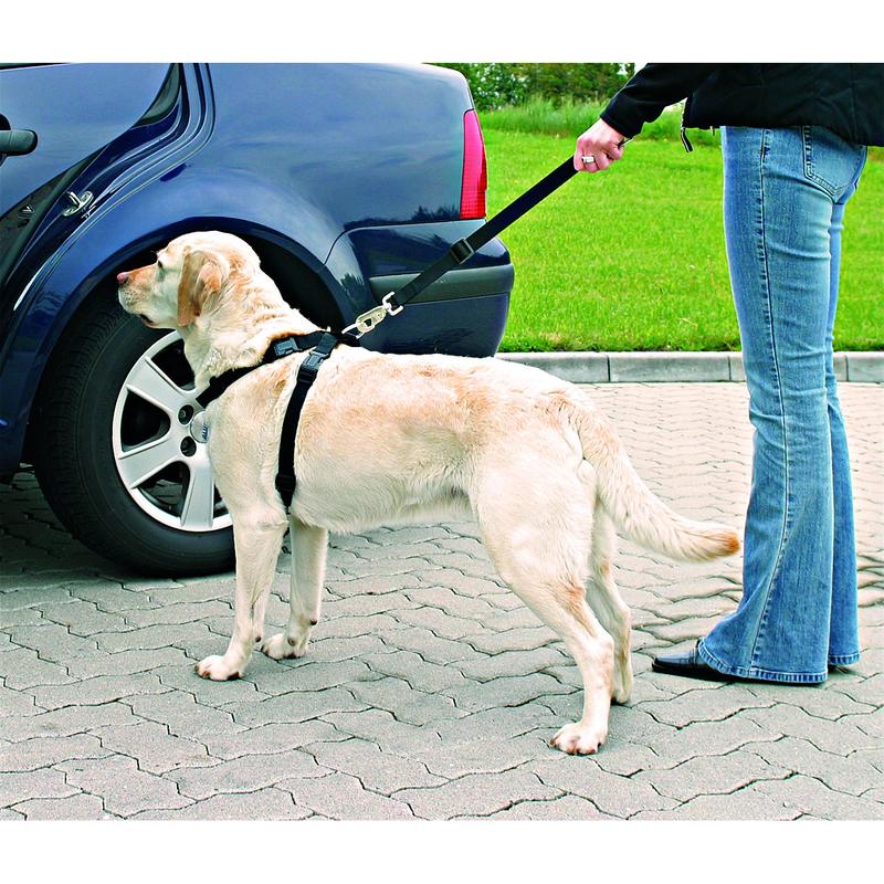 Hunde Sicherheitsgurt Sicherheitsgeschirr für das Auto Bild 5
