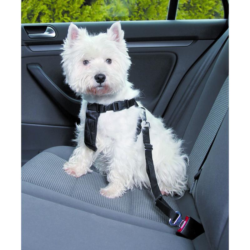 Hunde Sicherheitsgurt Sicherheitsgeschirr für das Auto Bild 2