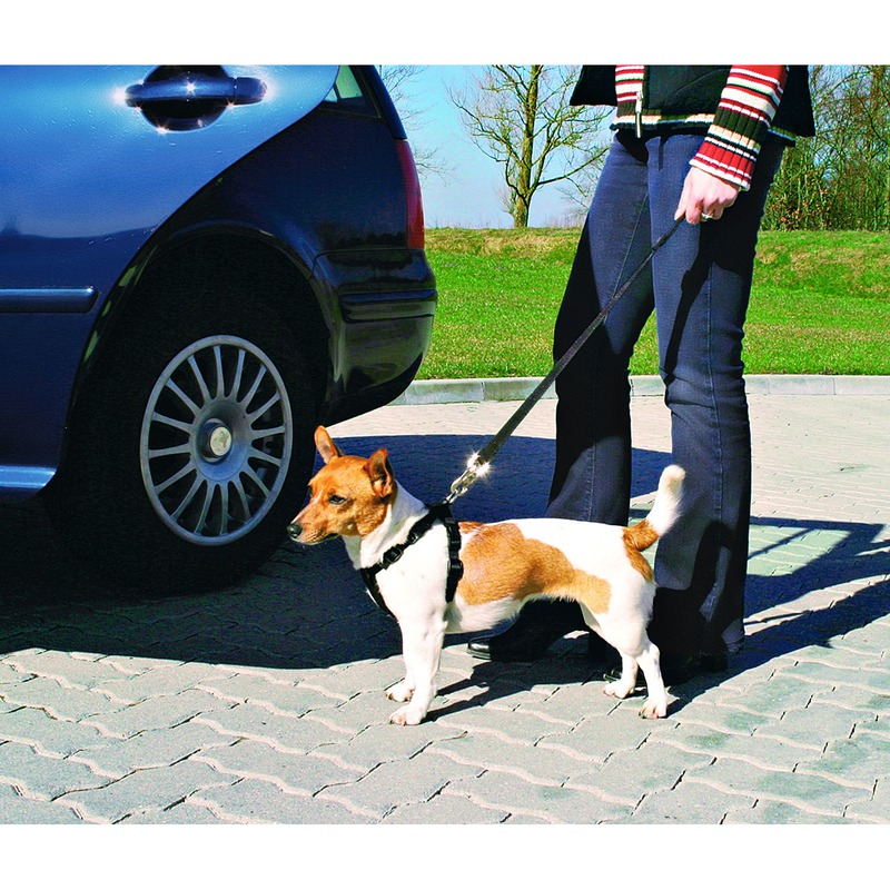 Hunde Sicherheitsgurt Sicherheitsgeschirr für das Auto Bild 4