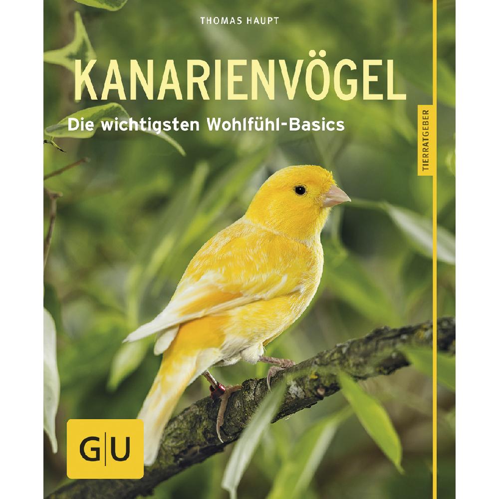 Kanarienvögel - glücklich und gesund Bild 1