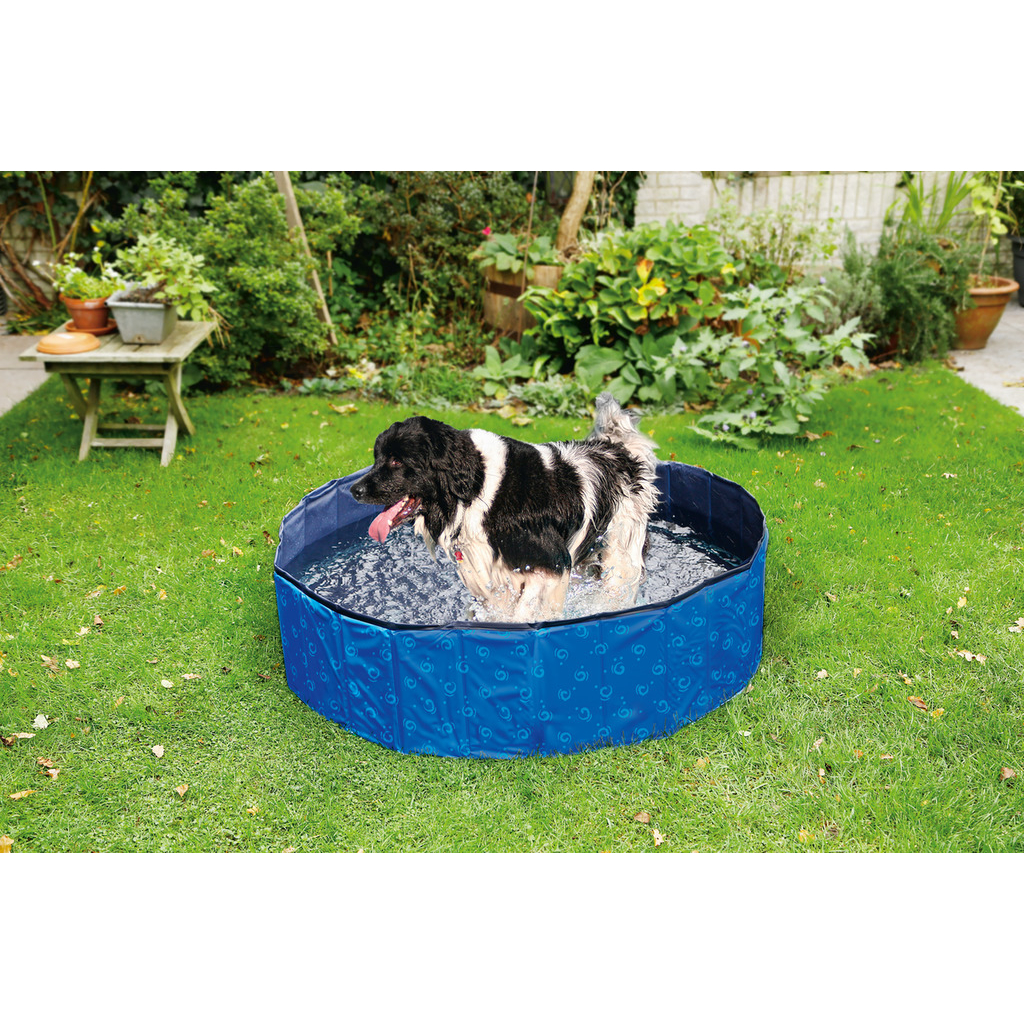 Karlie Doggy Pool Bild 5