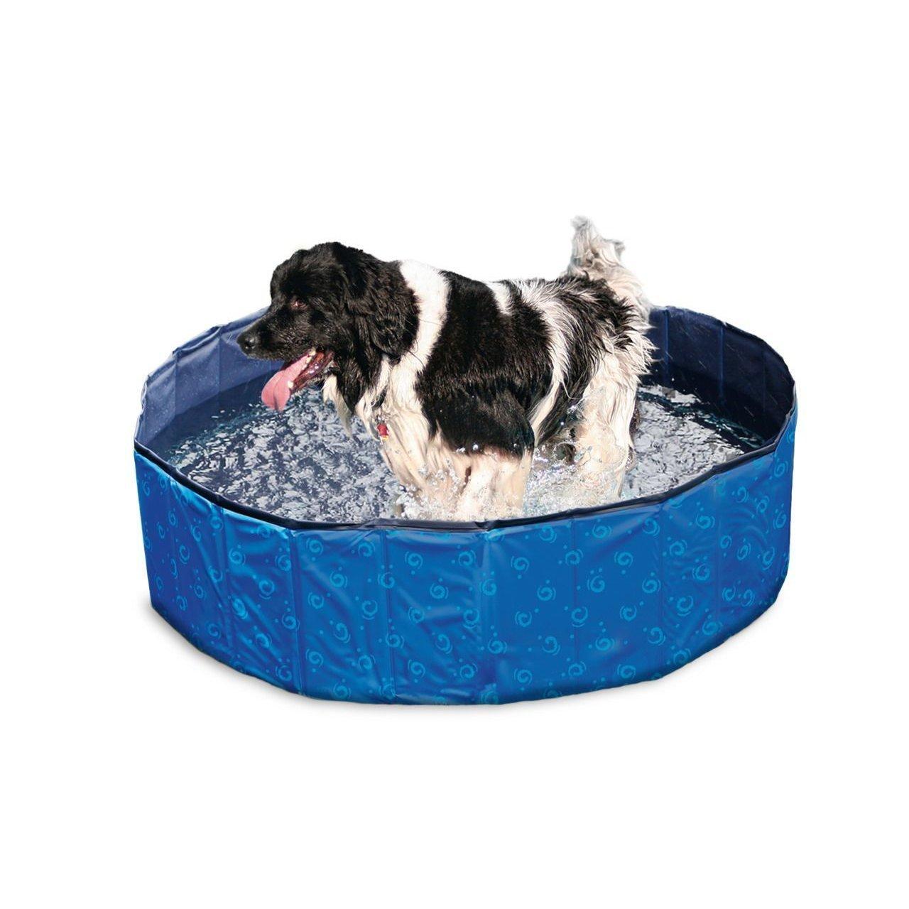 Karlie Doggy Pool Bild 6