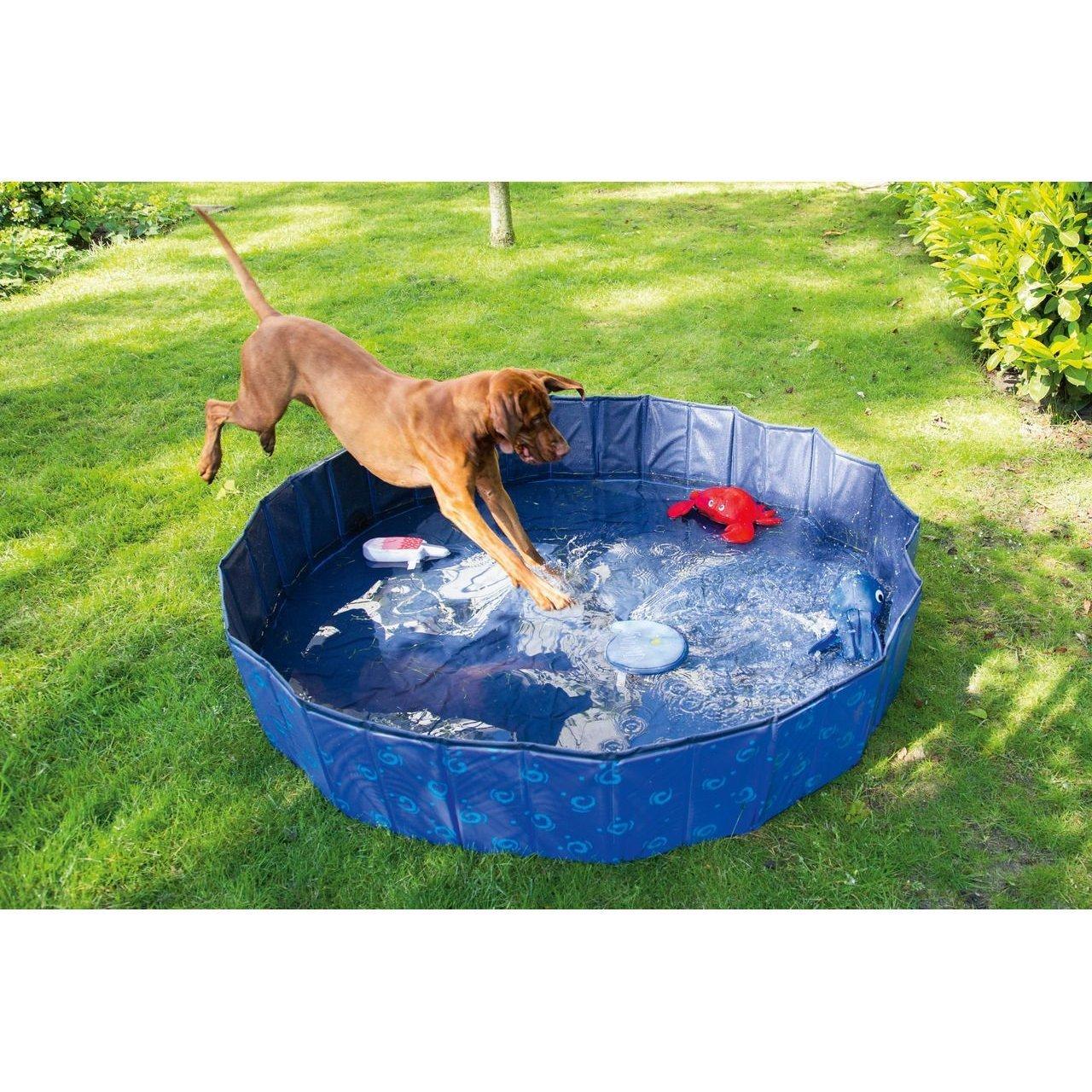 Karlie Doggy Pool Bild 2