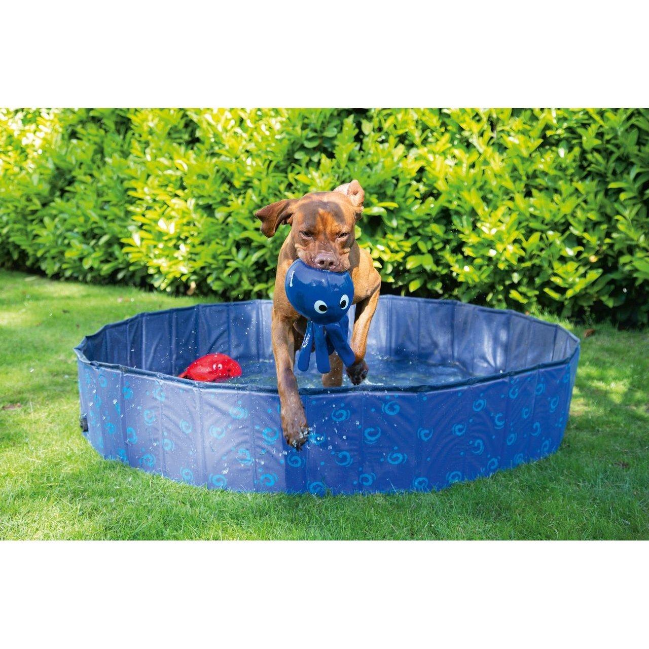 Karlie Doggy Pool Bild 4