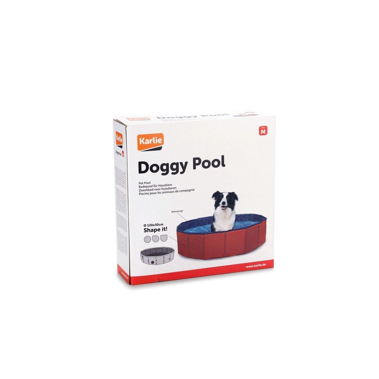 Hundepool Doggypool Bild 5