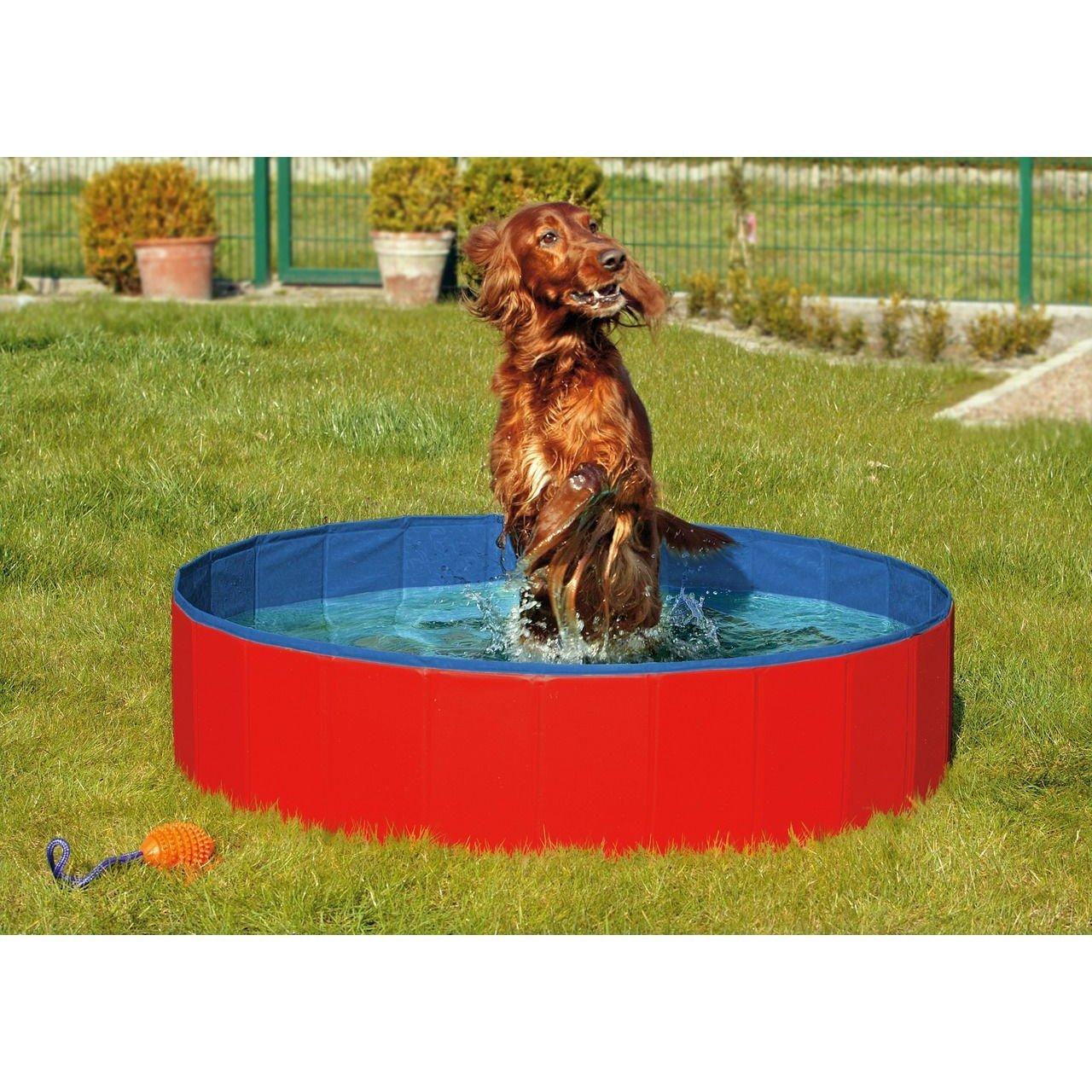 Hundepool Doggypool Bild 7