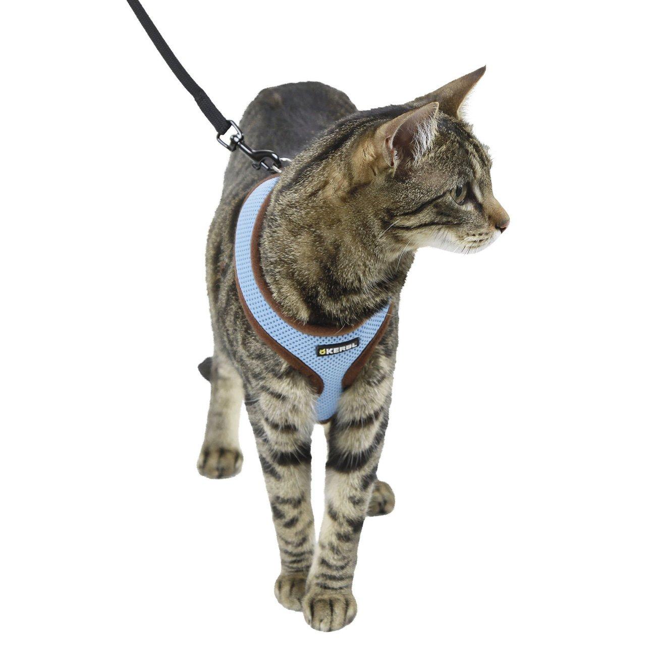 Katzengeschirr Active mit Leine Bild 4