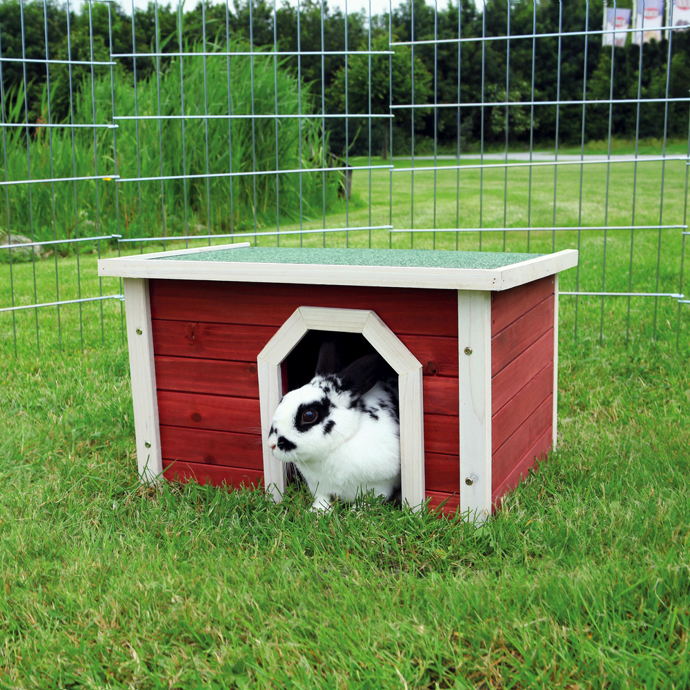 Kleintierhaus aus Holz rot weiß Bild 2