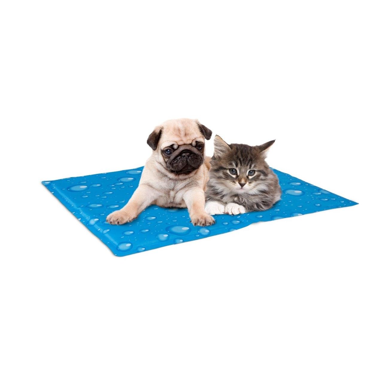 Kühlkissen für Hunde und Katzen Bild 4