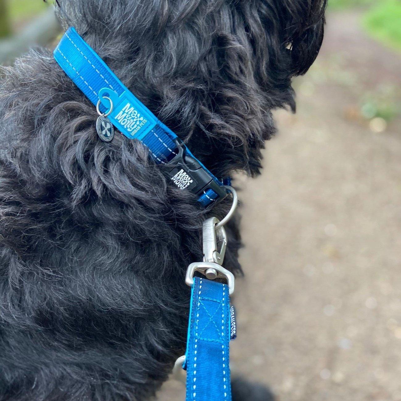 Max & Molly Matrix Smart ID Hundehalsband Bild 5
