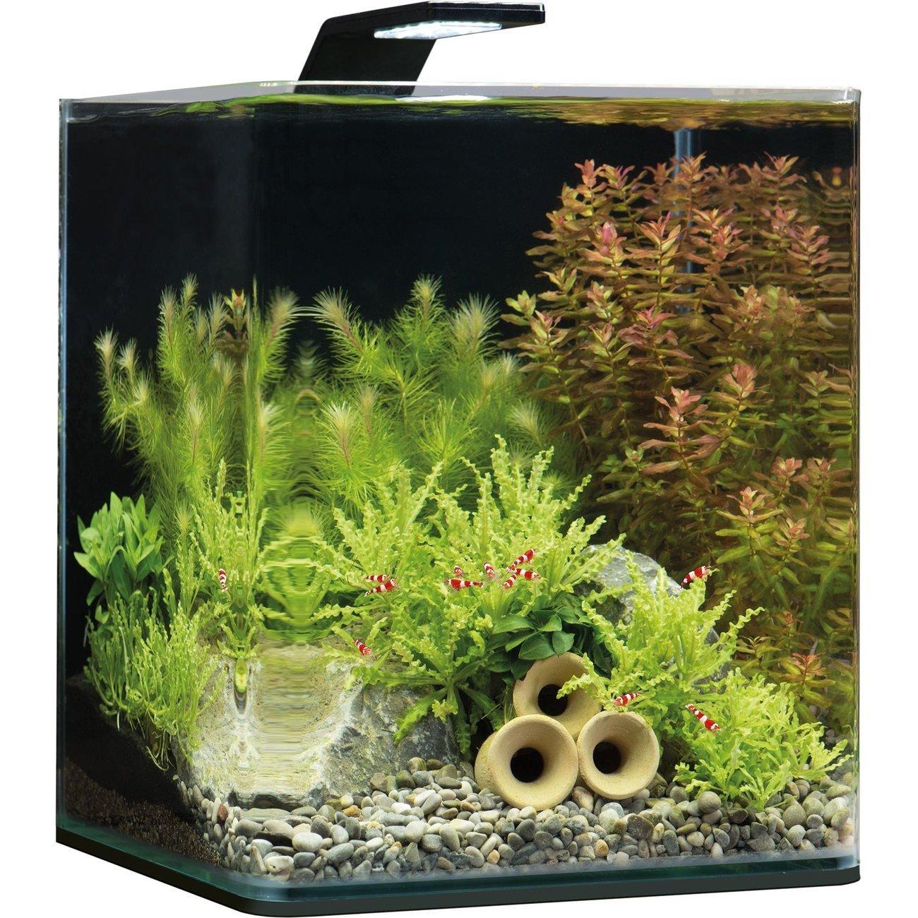 Dennerle NanoCube Basic Style LED Aquarium Bild 2