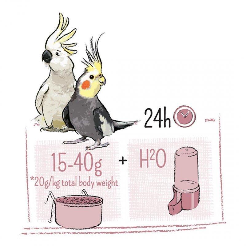 Puur Vogelfutter für Großsittiche und Kakadus Bild 3