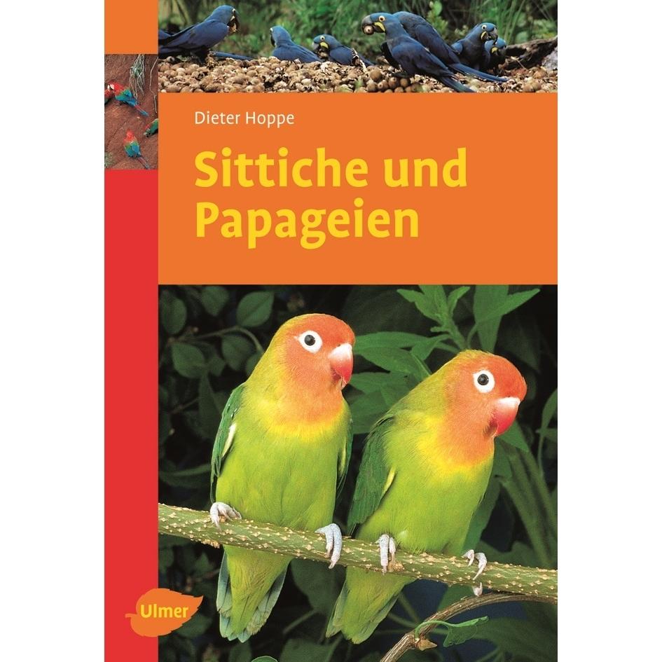 Sittiche und Papageien Bild 1