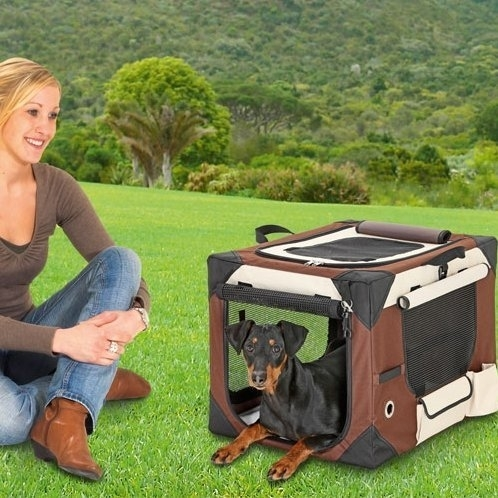 Smart Top Deluxe Hundebox Transportbox Bild 6