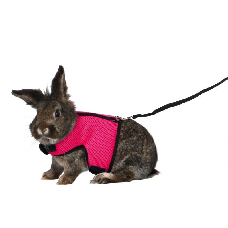 Softgeschirr für große Kaninchen mit Leine Bild 2