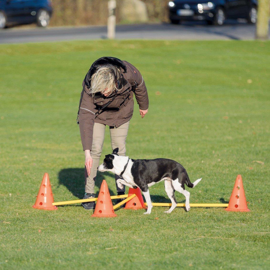 Trixie Dog Activity Agility Hindernisse Pilonen Bild 8
