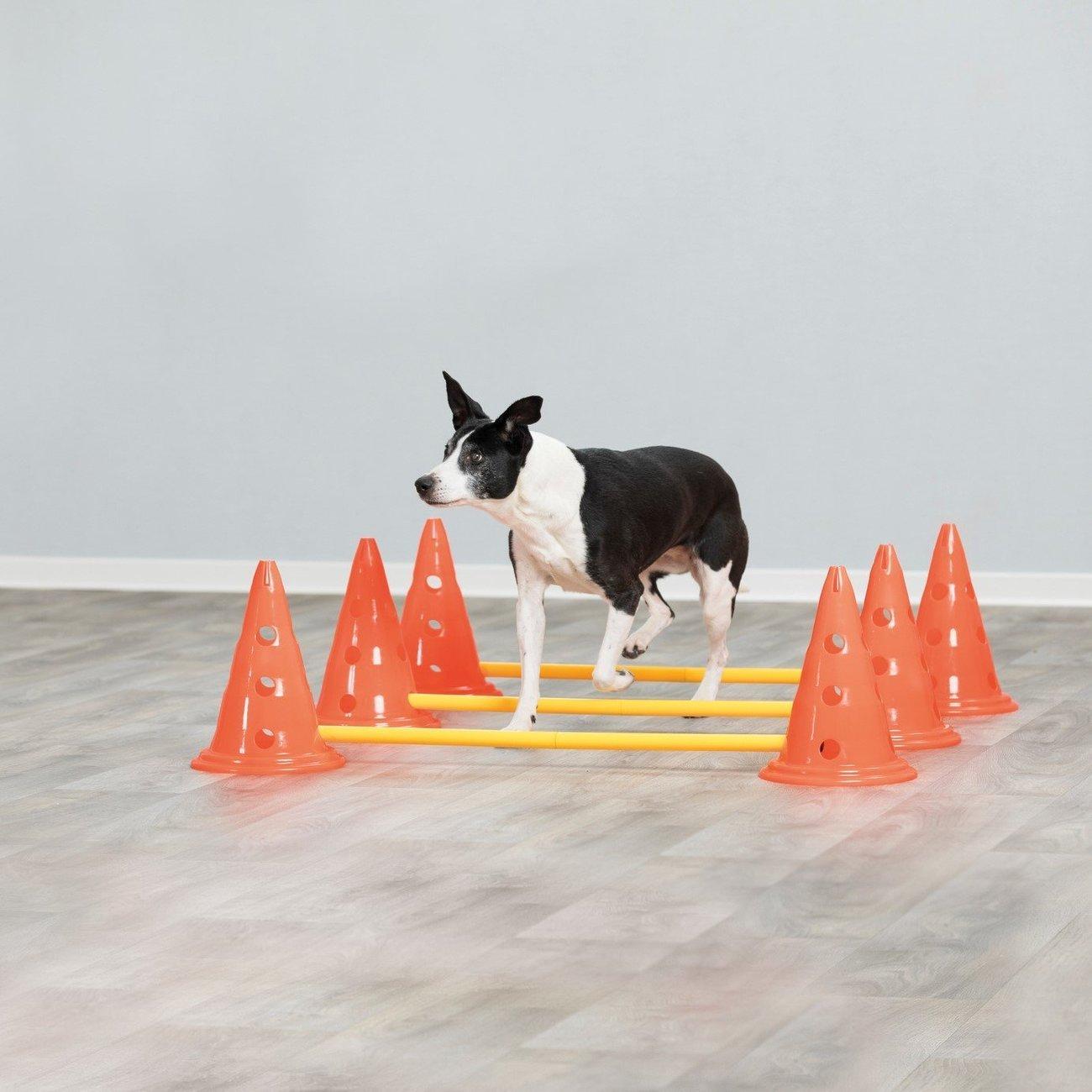 Trixie Dog Activity Agility Hindernisse Pilonen Bild 2