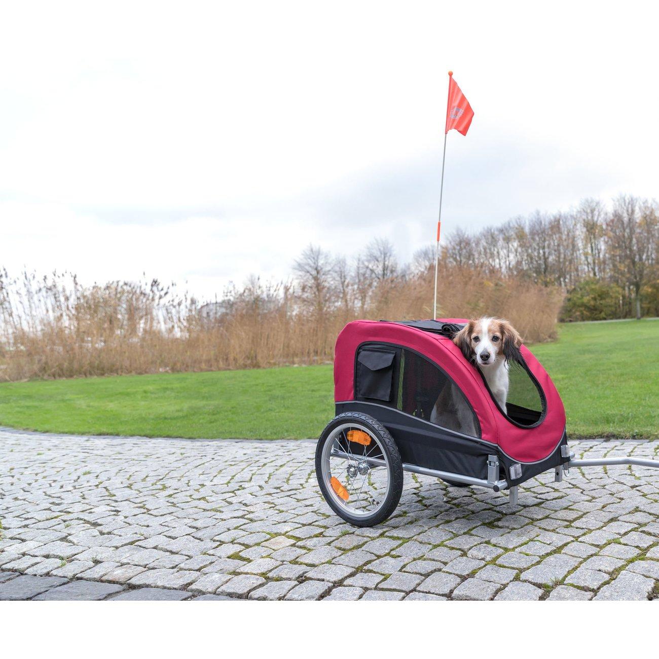 Fahrradanhänger für Hunde Bild 11