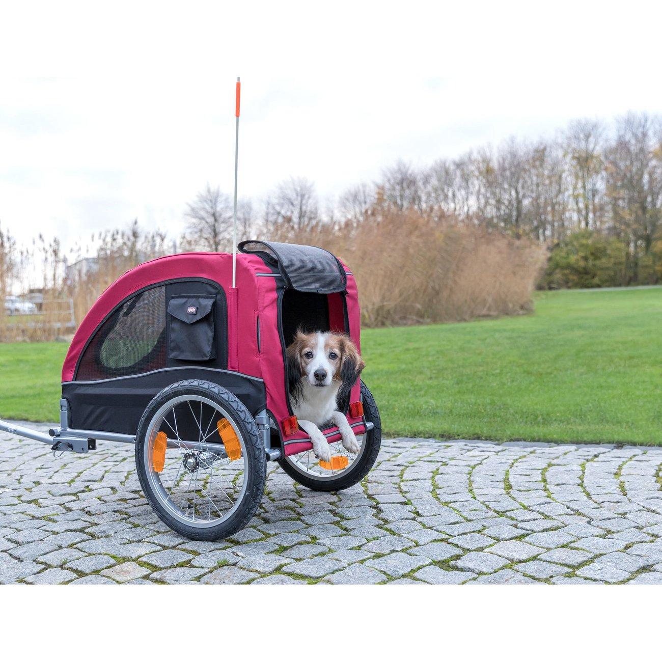 Fahrradanhänger für Hunde Bild 12