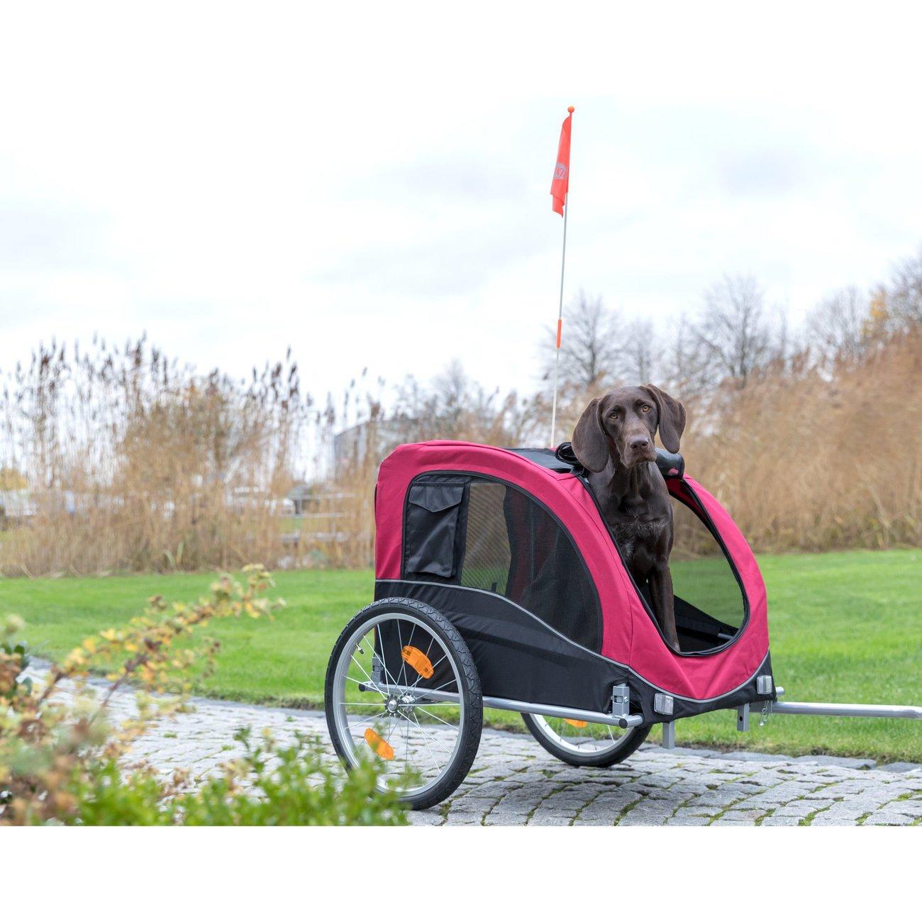 Fahrradanhänger für Hunde Bild 13