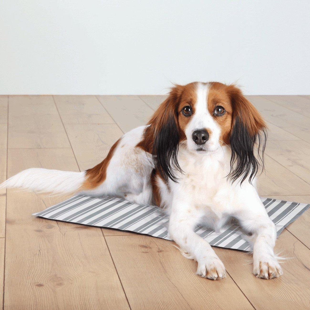 TRIXIE Hunde Kühlmatte Stripes Bild 2