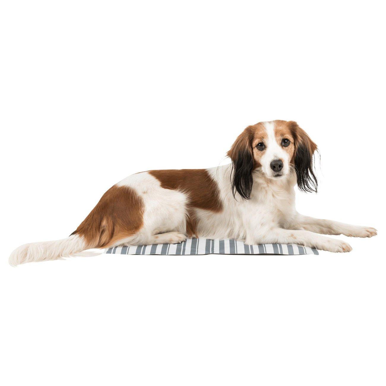 TRIXIE Hunde Kühlmatte Stripes Bild 8