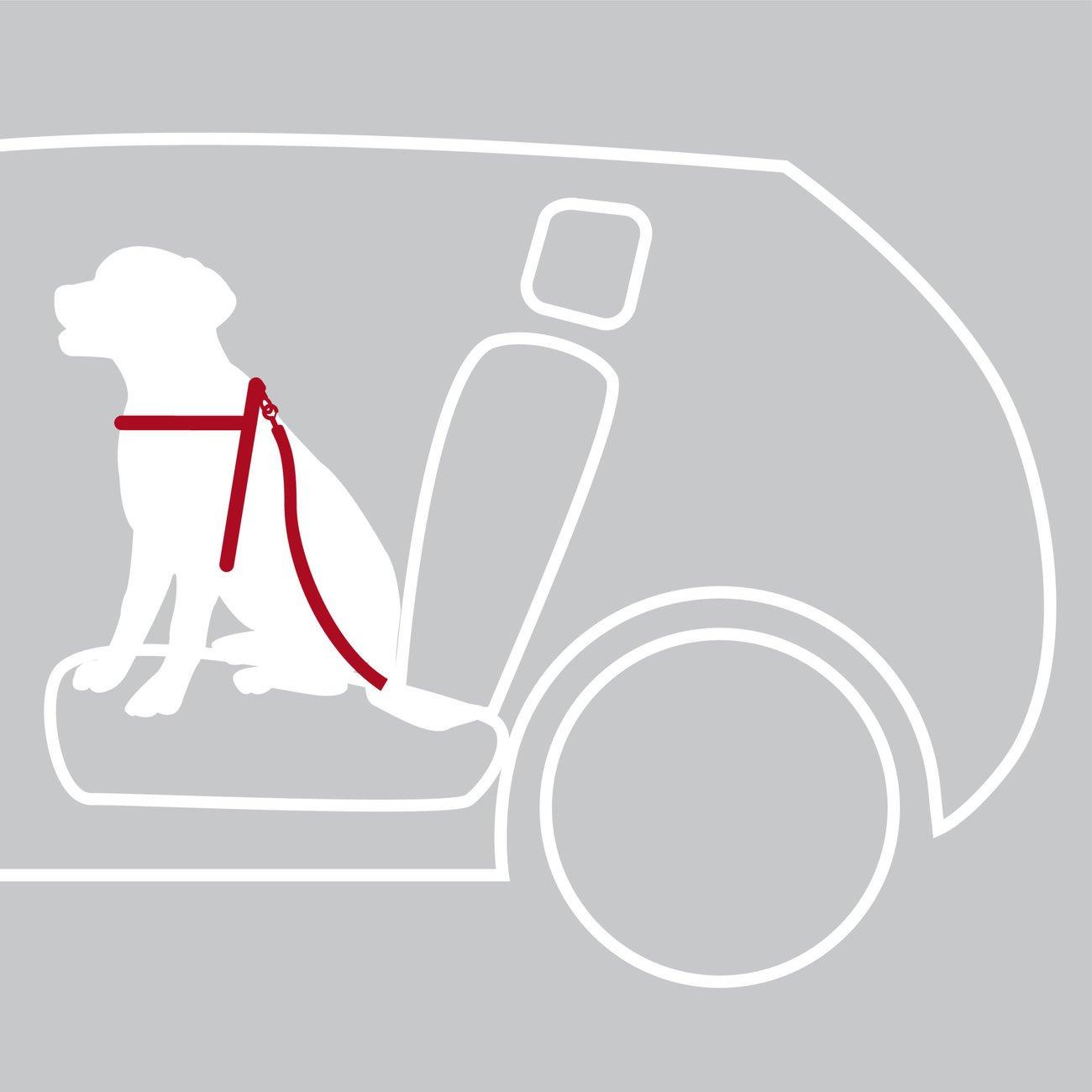 Hunde Sicherheitsgurt Sicherheitsgeschirr für das Auto Bild 10