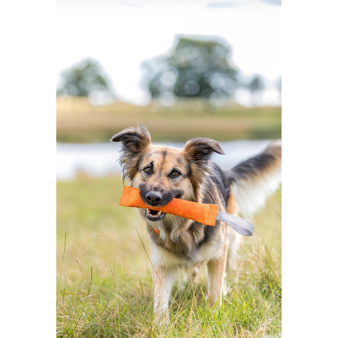 Trixie Sporting Trainings-Dummy für Hunde Bild 5