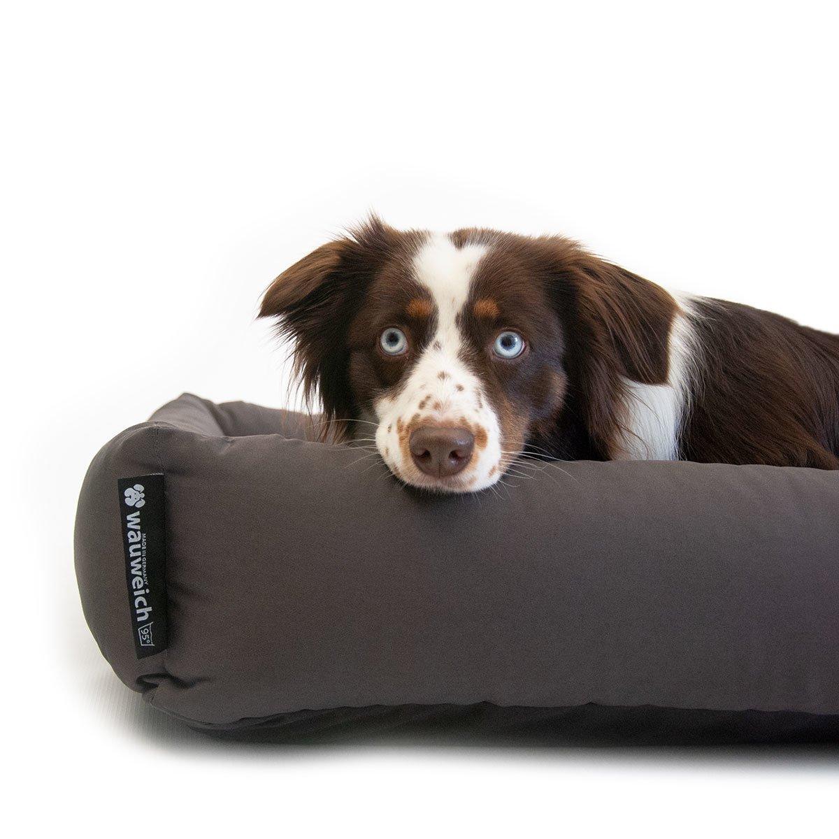 95 Grad Hundebett mit Einlegekissen Bild 4