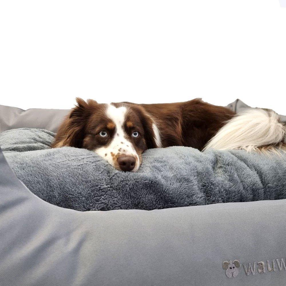 Das Regulierende - Hundebett mit Wendekissen Bild 8