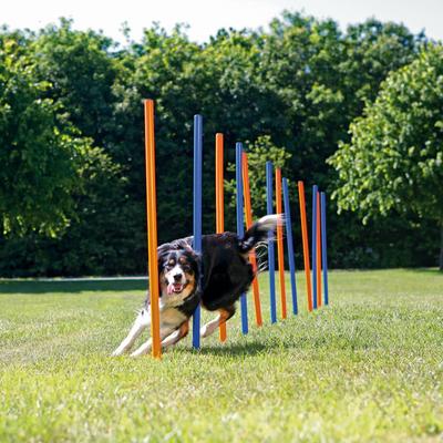 TRIXIE Agility Slalom Stangen für Hunde Preview Image