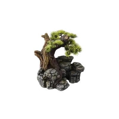 Aqua Della Bonsai auf Stein Preview Image
