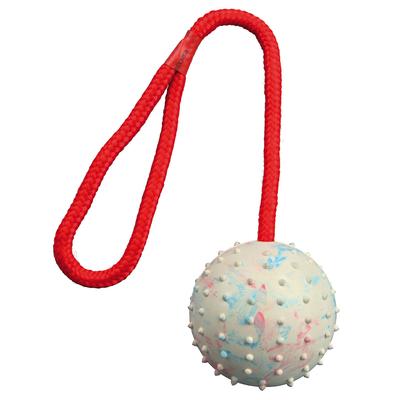 TRIXIE Spielball für Hunde am Seil mit Noppen Preview Image