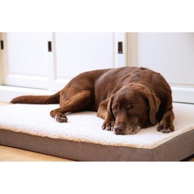 Beeztees Memoryfoam Liegekissen Zira für Hunde Preview Image