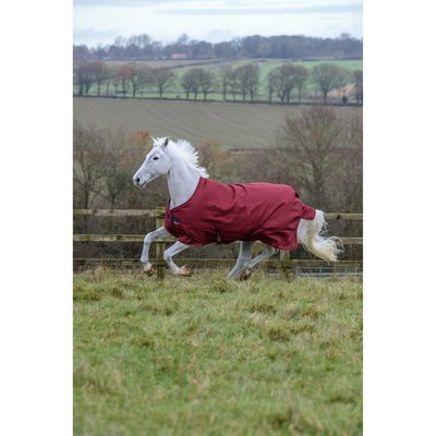 Bucas Regendecke Freedom Turnout Light Trendfarbe Preview Image