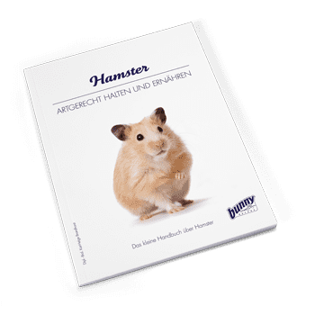 Bunny Book Hamster Preview Image