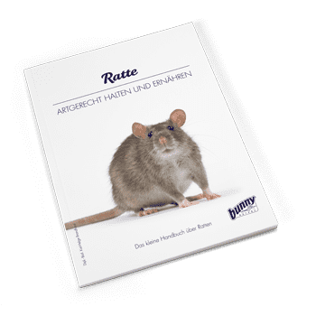 Bunny Book Ratte Preview Image