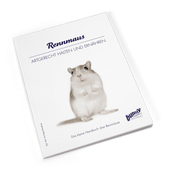 Bunny Book Rennmaus Preview Image