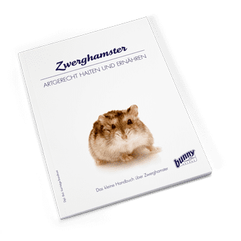 Bunny Book Zwerghamster Preview Image