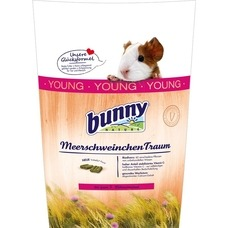 Bunny MeerschweinchenTraum young Preview Image