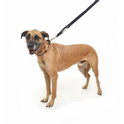 Buster Neopren Multifunktionsleine für Hunde Preview Image