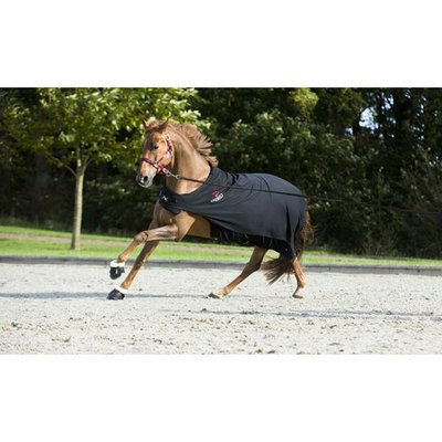 CATAGO Fir Tech Walker Pferde Decke Preview Image