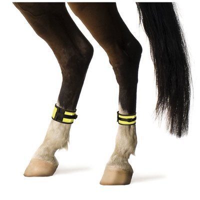 Covalliero Leuchtgamaschen Pferd Preview Image