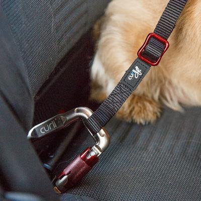 Curli Auto Sicherungsgurt Preview Image