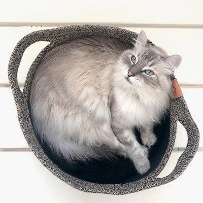 DREAM and DARE Katzenkorb aus Baumwollseil Preview Image